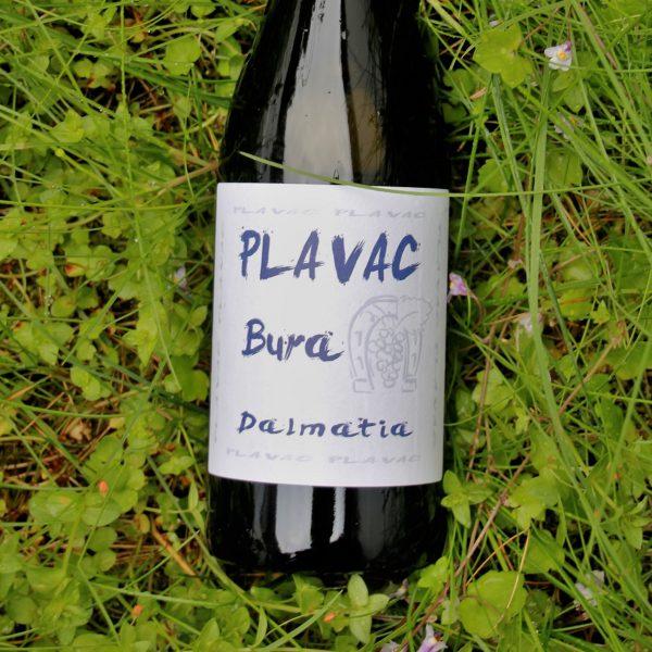 bura-wine-plavac